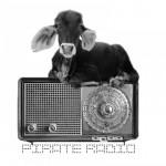 cropped-pirateradio2.jpg